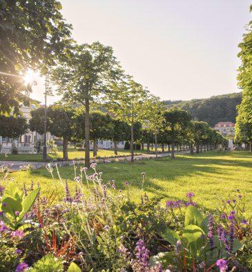 Schlosspark Staatsbad Bad Brückenau